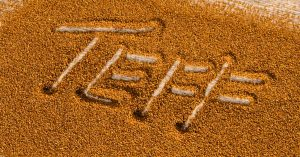 Teff is an ancient grain with great nutritional value but comes with some food formulation challenges. Learn more in the Prospector Knowledge Center.